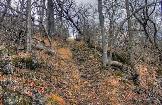 pathway up at meramec state park missouri
