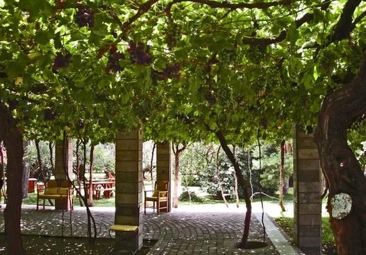 patio in argentina