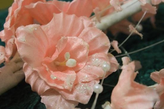 peach flower background