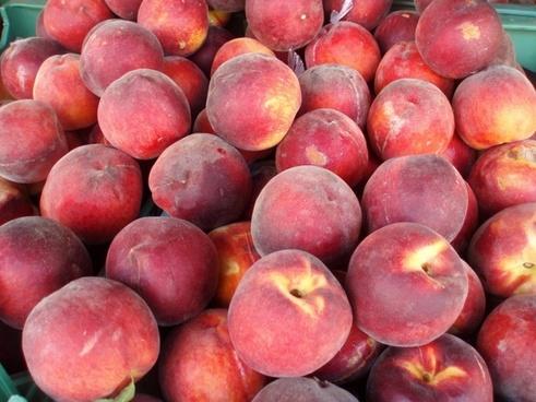 peaches delicious peaches peach