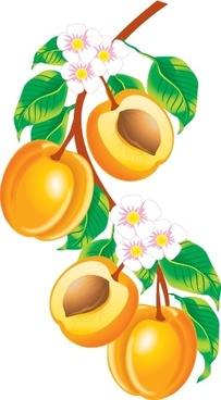 fruit background peaches flowers branch icons decor