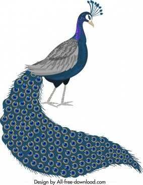 peacock icon elegant long tail decor cartoon design