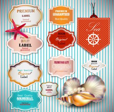pearls and seashells elements label vector