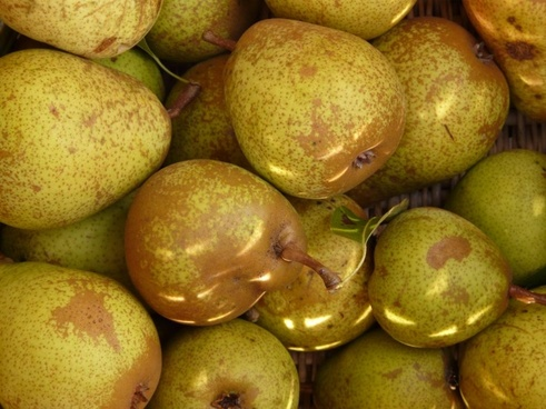 pears fruits fruit