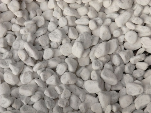 pebble white background