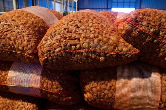 pecans nuts bags