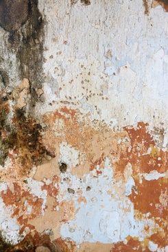 peeled paint on wall