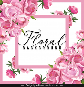 peonies petals background blooming pink decor symmetric layout
