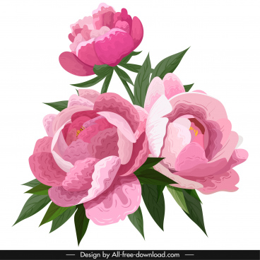 peonies petals painting colored vintage decor handdrawn design