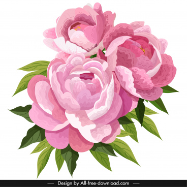 peony flower painting colored vintage design