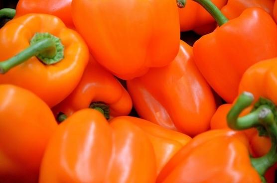 pepper orange food