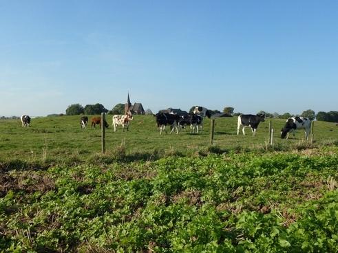 persingen the netherlands landscape