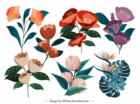 petals icons colorful classical design
