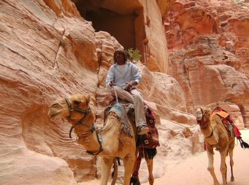petra jordan camel