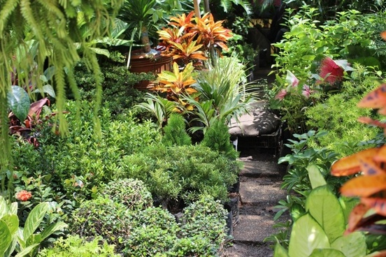 philippine garden