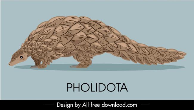 pholidota species icon classic handdrawn sketch