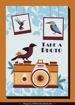 photography background retro design bird camera decor