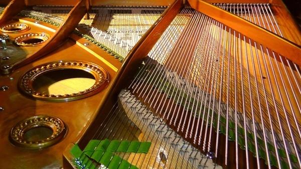 piano interior ornaments expensive