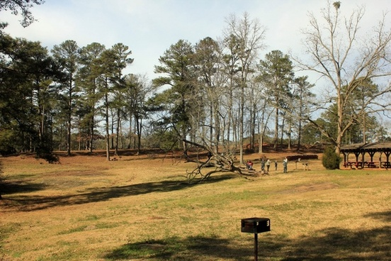 picnic area and landscape at high falls state park georgia