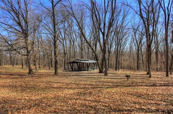 picnic area at maquoketa caves state park iowa