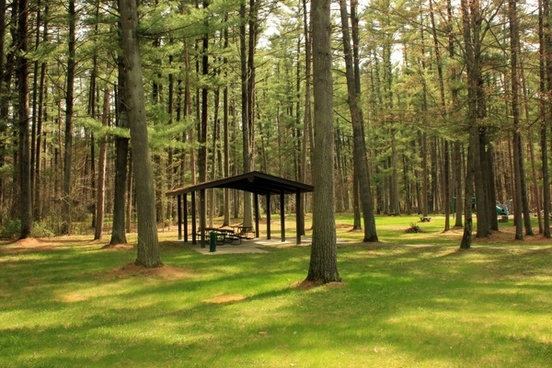picnic area at rocky arbor state park wisconsin