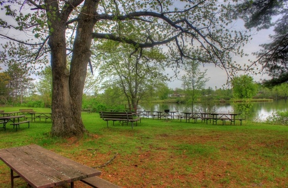 picnic area by the lake at council grounds state park wisconsin