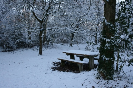 picnic bench in snow