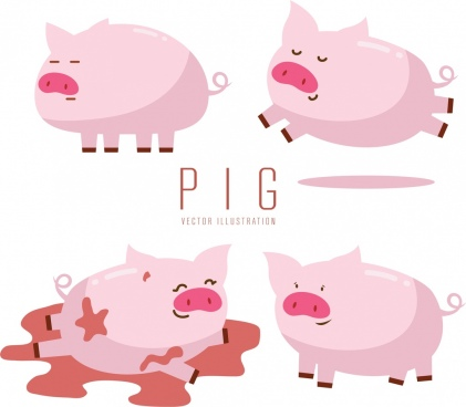pig icons collection cute pink design