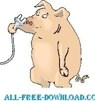 Pig with Nose Plug