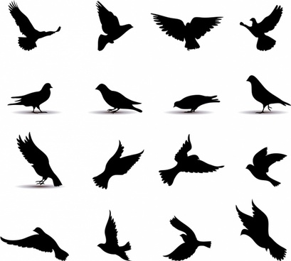 Dove free vector download (112 Free vector) for commercial