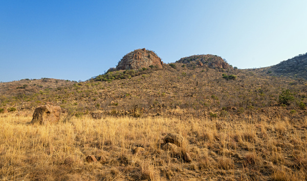 pilanesberg landscape ii