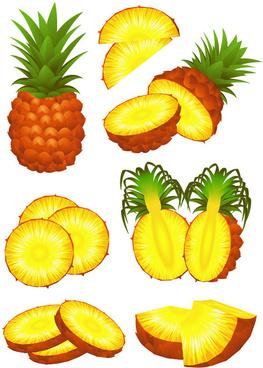 pineapple design elements vector graphic