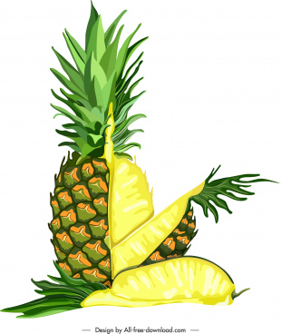 pineapple fruit painting bright colorful slices sketch