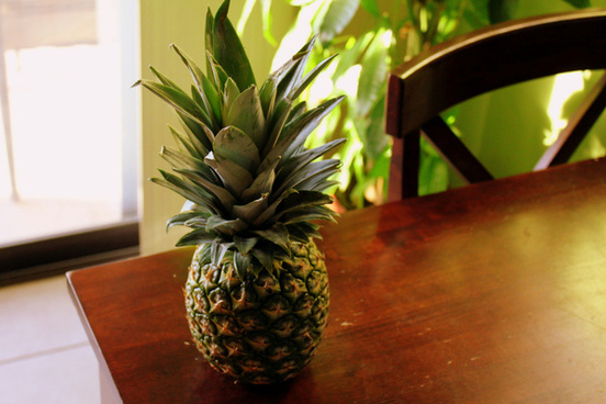 pineapple fun step 1