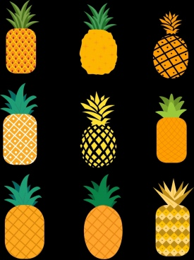 pineapple icons collection colorful flat shapes