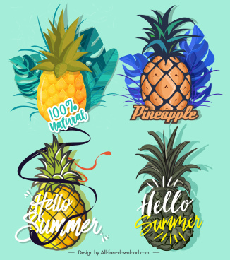 pineapple label templates colorful classical flat design