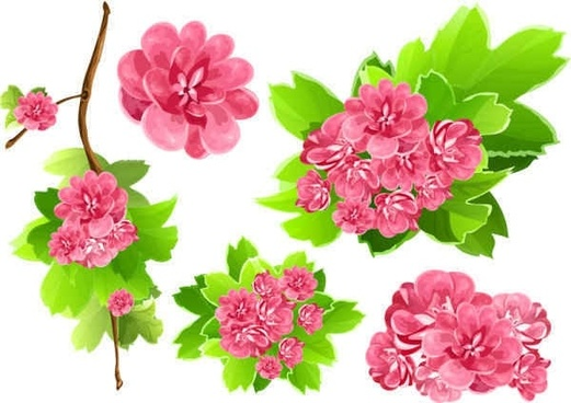 Pink Flowers Vector background