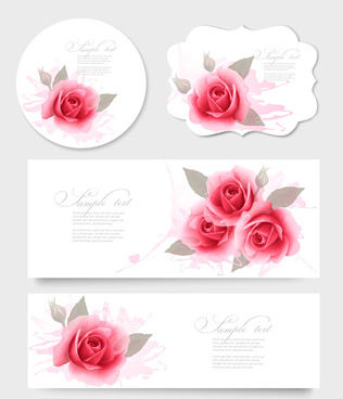 pink rose banner and cards vector