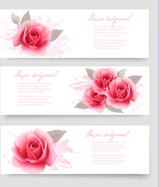 pink rose banner vector design