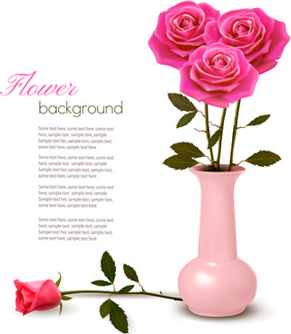 pink rose beautiful background vectors