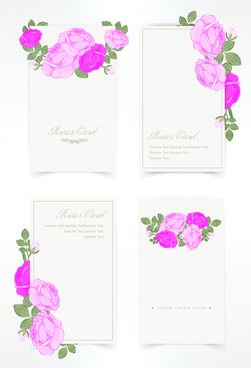 pink rose with card vector design graphic