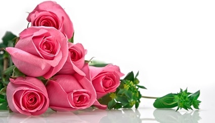 pink roses bouquet picture