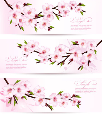 pink sakura banner vector
