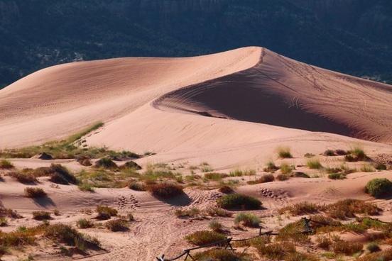 pink sand dunes utah usa