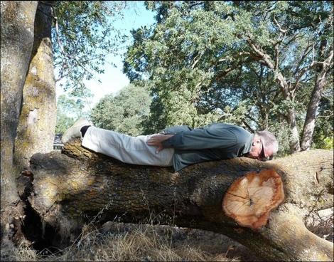 planking 921