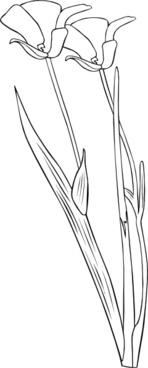 Plant Flower Outline clip art