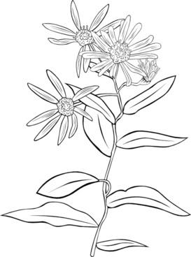 Plant Flowers Shrub clip art