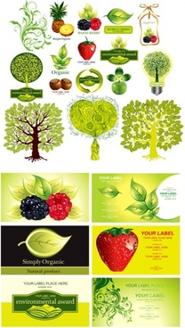 plant fruit theme vector