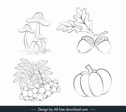 plant icons handdrawn mushroom fruits chestnut sketch