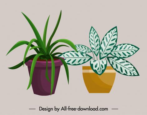 plant pot icons colored classic design